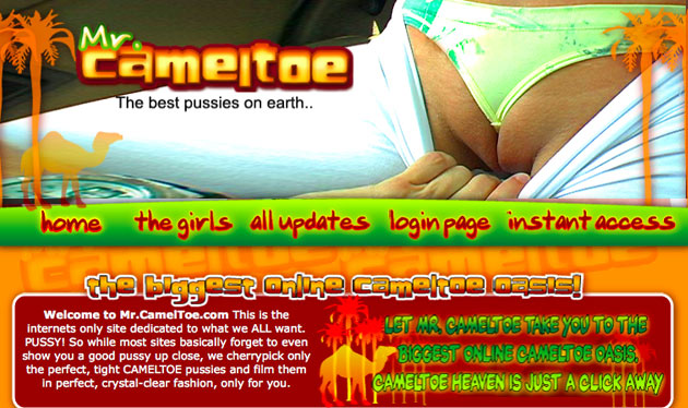 mrcameltoe review