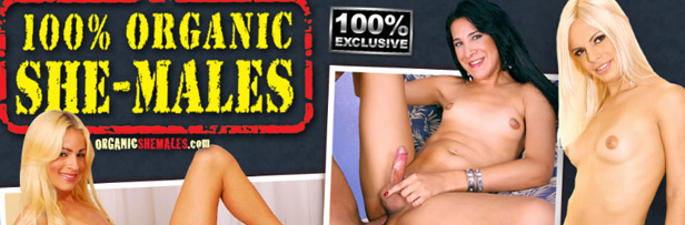 most awesome shemale porn site to access great xxx videos