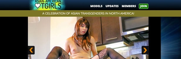 asianamericantgirls is the most exciting ladyboy porn website featuring top notch hardcore content